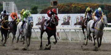 Imputan a dos ciudadanos por manipular resultados en carrera del Hipódromo La Rinconada