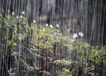 Inameh prevé este miércoles lluvias de intensidad variable y chubascos en el país